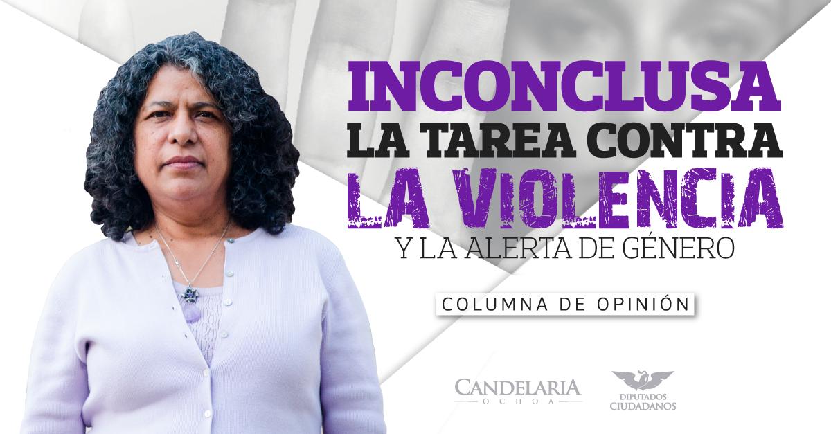 Siempreviva: Inconclusa la tarea contra la violencia y la alerta de género