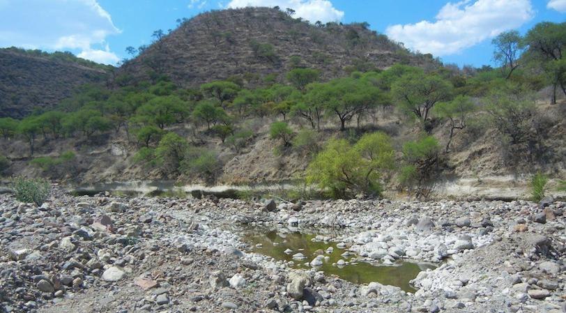 Después de presentada denuncia, PROFEPA cancela extracciones del Río Verde
