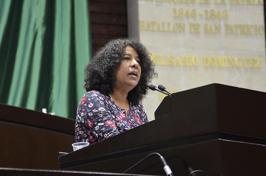 Los Diputados Ciudadanos piden la representación justa de las comunidades indígenas por medio de municipios autónomos