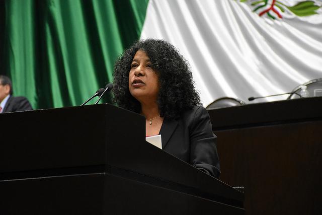 Candelaria Ochoa propone transparentar los recursos recaudados por el IEPS para garantizar que el impuesto cumpla su objetivo